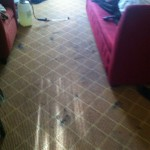 Joliet-Carpet-Clean-before