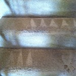 Joliet-Stairs-Carpet-Cleaning