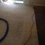 Joliet-Traffic-Area-carpet-cleaners