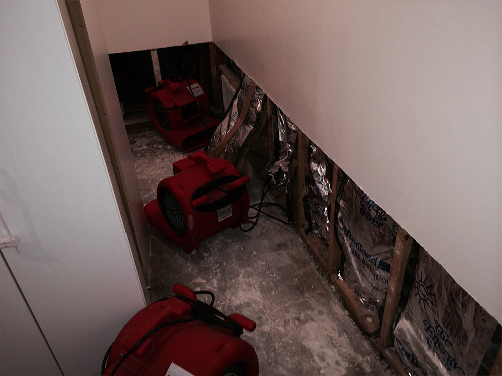 Water damage restoration joliet carpet cleaning joliet for Resto equipement