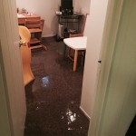 Joliet-office-room-flood-damage-repair